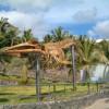 Museo de los Cetaceos