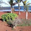 Vacanze a Lanzarote